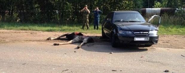 Авария в Городце Нижегородская Область - YouTube
