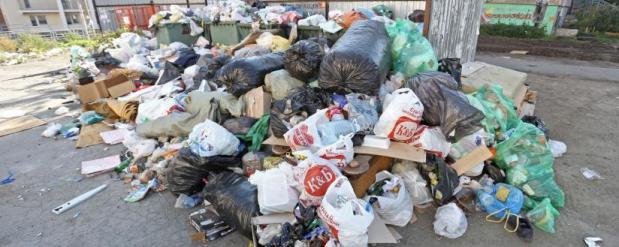 Мэр города плнирует разгребать мусорные кучи